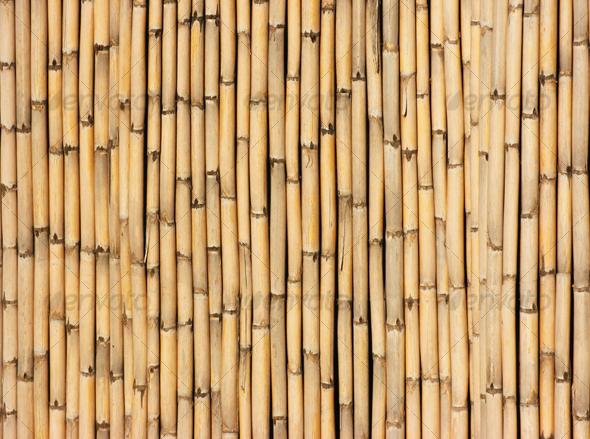 Reeds 2 - Nature Textures