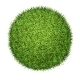 Green Grass Ball  - GraphicRiver Item for Sale