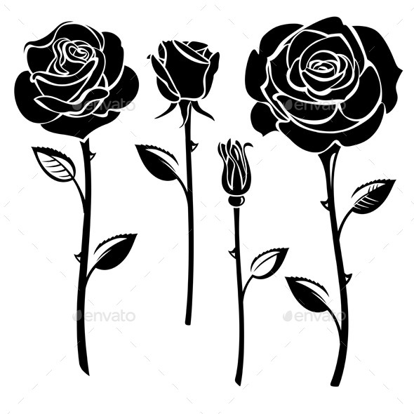 Roses - Flowers & Plants Nature