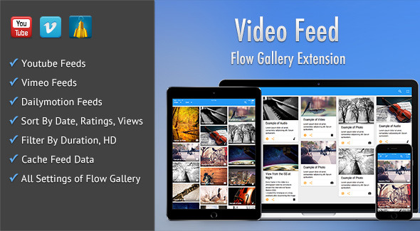 Video Feed - Flow Gallery Exension - CodeCanyon Item for Sale
