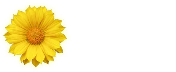 Flower%20logo%20590