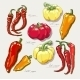 Red Hot Peppers - GraphicRiver Item for Sale