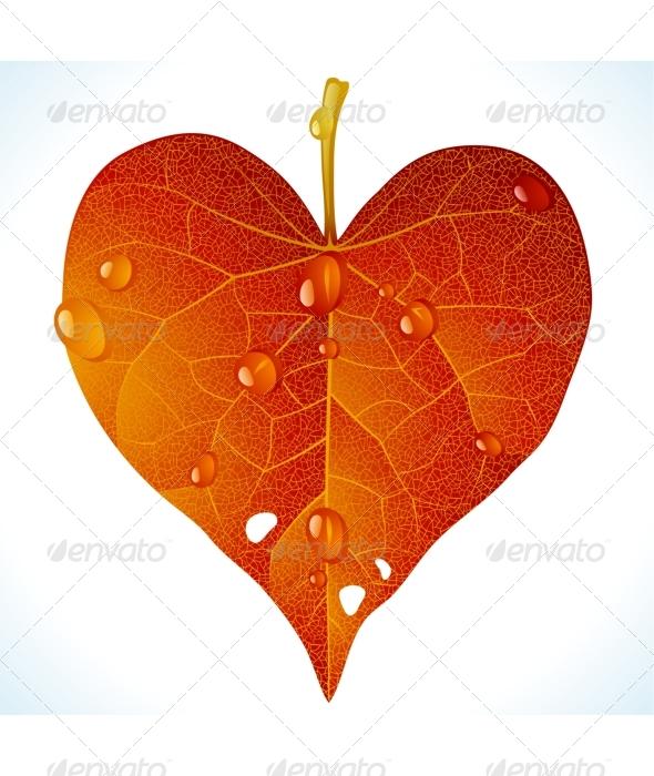 Autumnal love - Flowers & Plants Nature