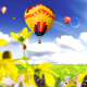 Nature Logo Reveal (Air Balloons) - VideoHive Item for Sale