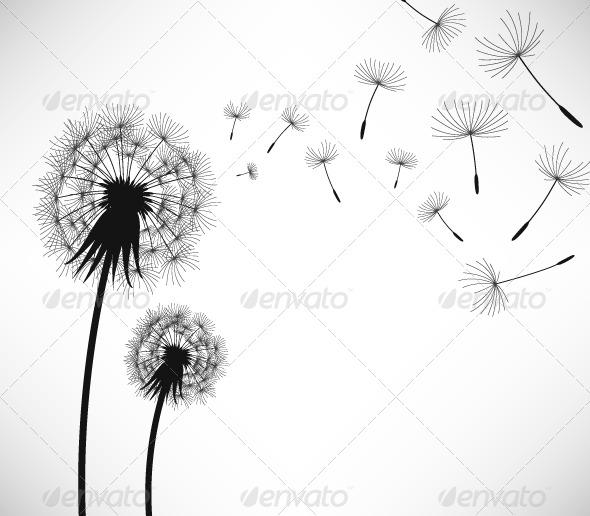 Dandelion Wind Blow Flower - Flowers & Plants Nature