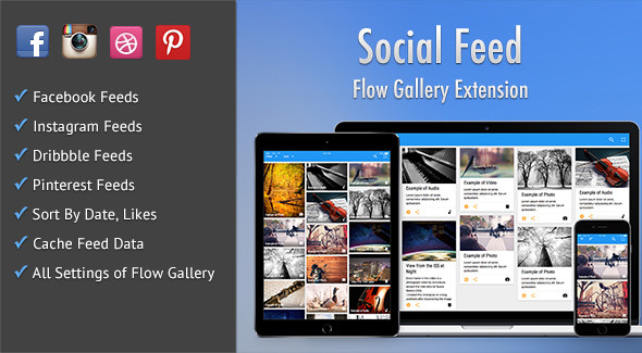 Social Feed - Flow Gallery Exension - CodeCanyon Item for Sale