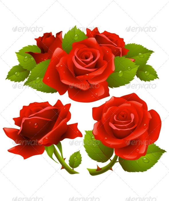 Red roses set - Flowers & Plants Nature