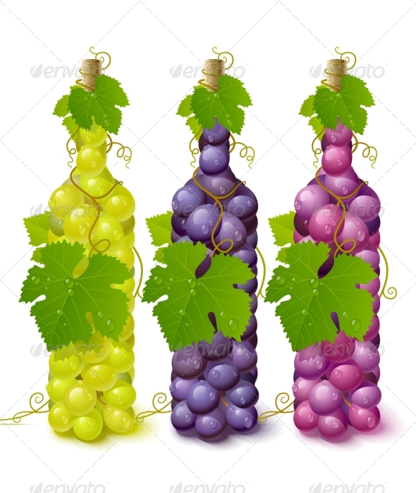 Vine grape bottles - Food Objects