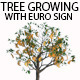 Tree Growing With Euro Sign - VideoHive Item for Sale