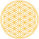 Flower of Life - GraphicRiver Item for Sale
