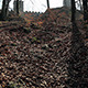 Hidden Castle in an Autumn Forest - VideoHive Item for Sale