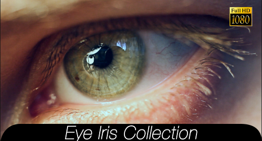 Eye Iris Collection