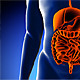 Male Digestive System Medical Scan Anatomy - VideoHive Item for Sale