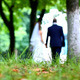 Wedding Couple Walking in Park - VideoHive Item for Sale
