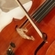 Cello - VideoHive Item for Sale