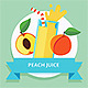 Fruit Smoothie Collection - GraphicRiver Item for Sale