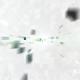 Clean Digital Logo - VideoHive Item for Sale