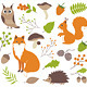 Woodland Animals - GraphicRiver Item for Sale