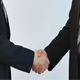 Shaking Hands - VideoHive Item for Sale