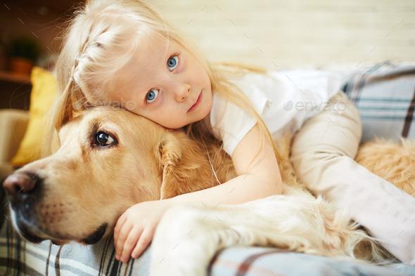 Cuddling dog - Stock Photo - Images
