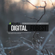 Digital Forest - VideoHive Item for Sale