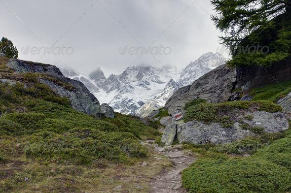 On the Europaweg - Stock Photo - Images