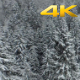 Aerial Winter Forest Snowfall - VideoHive Item for Sale