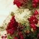 New Rowanberry - VideoHive Item for Sale