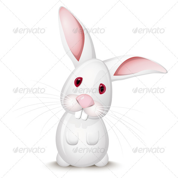 Little White Rabbit - Animals Characters