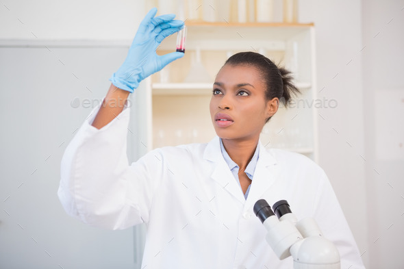 Scientist examining test tube in laboratory - Stock Photo - Images