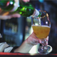 Bartender Pours Beer - VideoHive Item for Sale