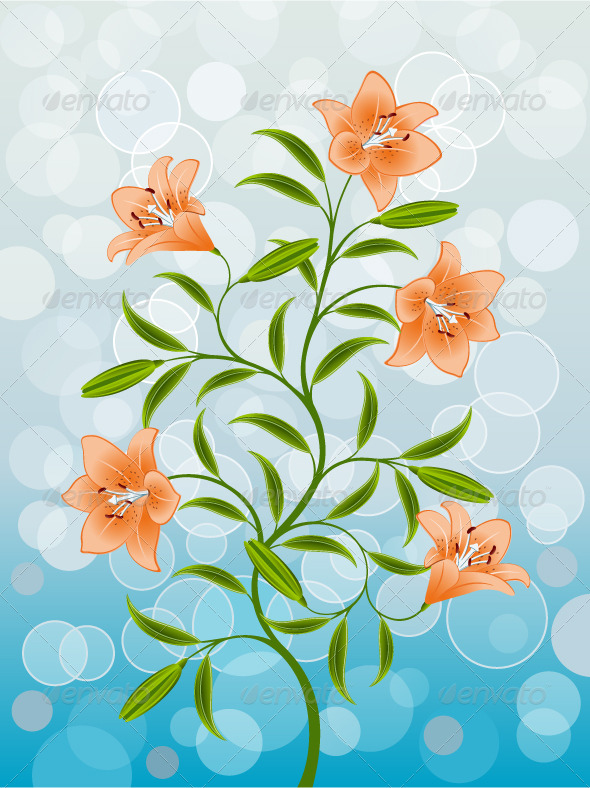 Floral pattern with a lily - Flowers & Plants Nature