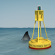 Shark and the Buoy
