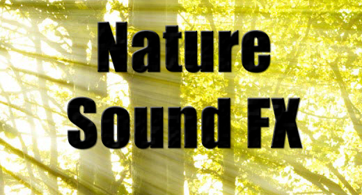 Nature Sound Effects