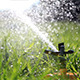 Sprinkler Watering Grass in Park.  - VideoHive Item for Sale