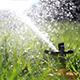 Sprinkler Watering Grass in Park.  - VideoHive Item for Sale