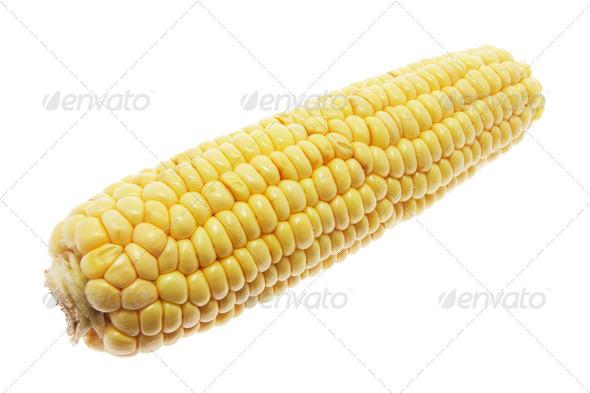Sweet Corn Cob - Stock Photo - Images