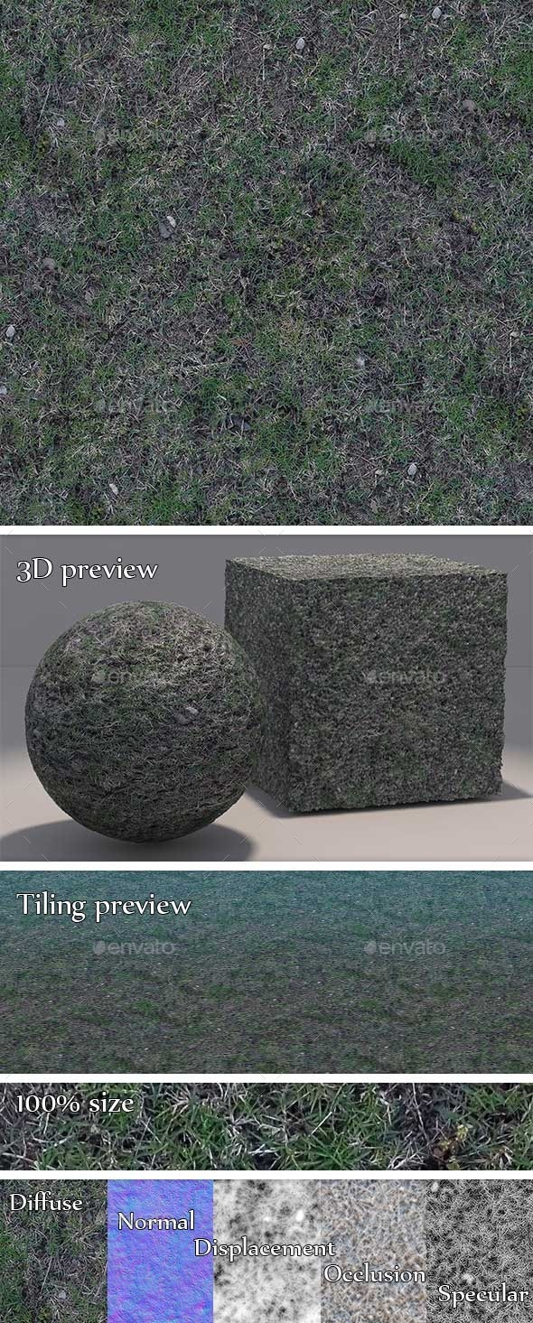 Grass - Dry and Patchy Seamless Texture - 3DOcean Item for Sale