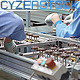 Hard Working Cheap Labor Assembling Production - VideoHive Item for Sale