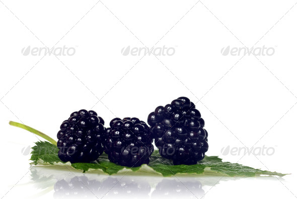 blackberry with green leaf isolated on white - Stock Photo - Images