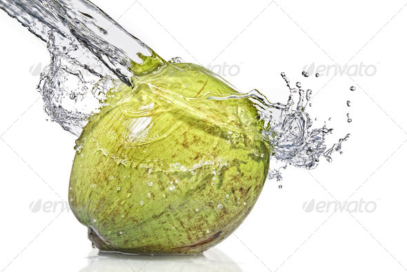 fresh water splash on coconut isolated on white - Stock Photo - Images