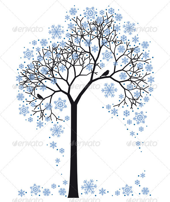 Winter Tree - Seasons Nature