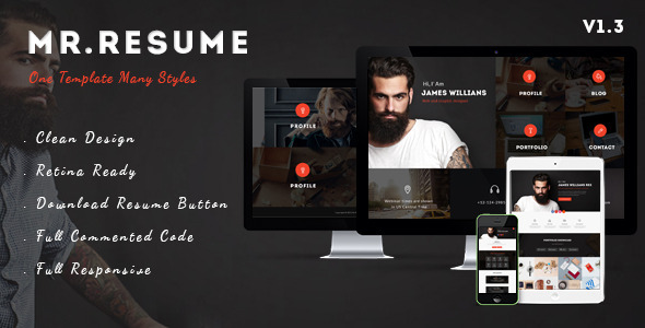 Mr.Resume – One Page Resume/Personal PSD Template