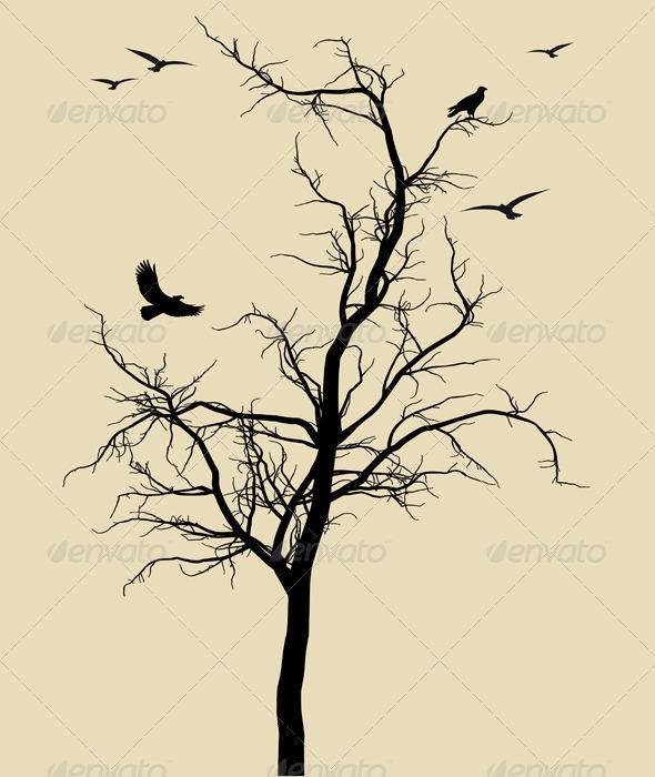 Dead Black Tree - Flowers & Plants Nature