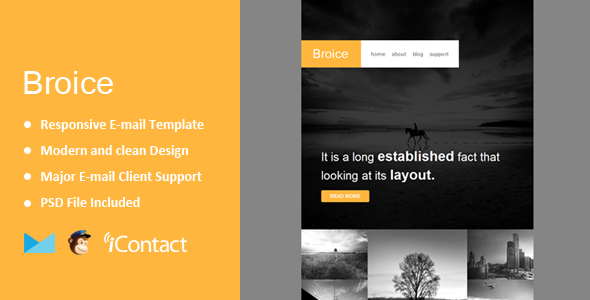 Broice - Responsive E-mail Template + Themebuilder Access