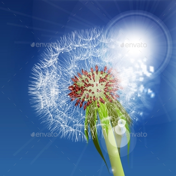Dandelion Seeds Blown In The Blue Sky. - Flowers & Plants Nature