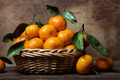 Citrus fruits - PhotoDune Item for Sale