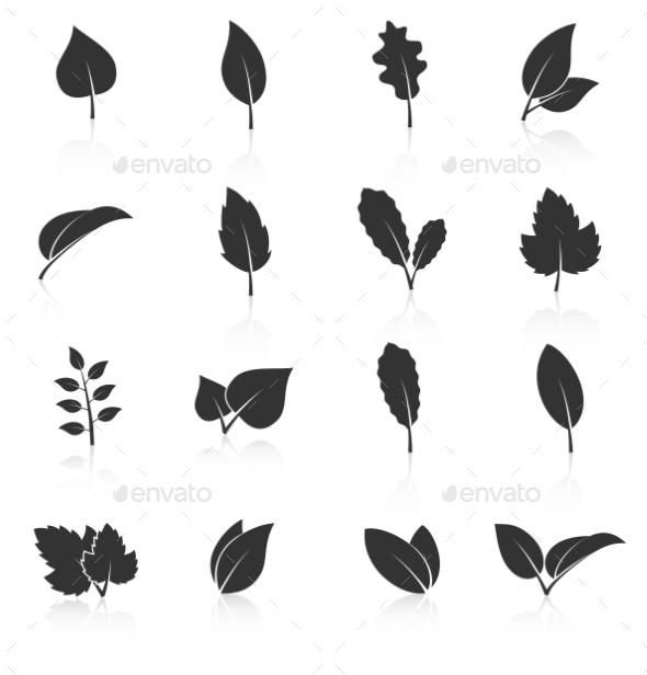 Set Of Leaf Icons On White Background