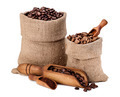 Varieties of Coffee Beans - PhotoDune Item for Sale