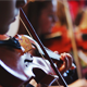 Ensemble Plays the Violin - VideoHive Item for Sale